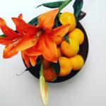 Mandarine za odpornost telesa