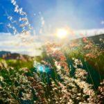 11 smernic za harmonično življenje